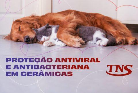 Materiais Cerâmicos: Inovações Antivirais e Antibacterianas