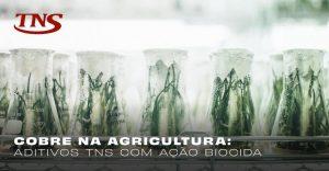 Cobre na agricultura: aditivos com ação biocida